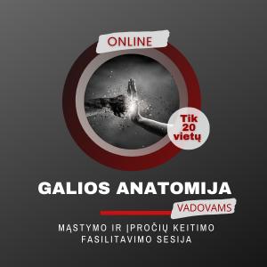 Galios-anatomija-fasilitavimo-sesija-online